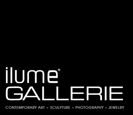 ilume GALLERIE Spring 2014 event raised $2500